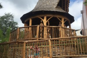 doseum treehouse