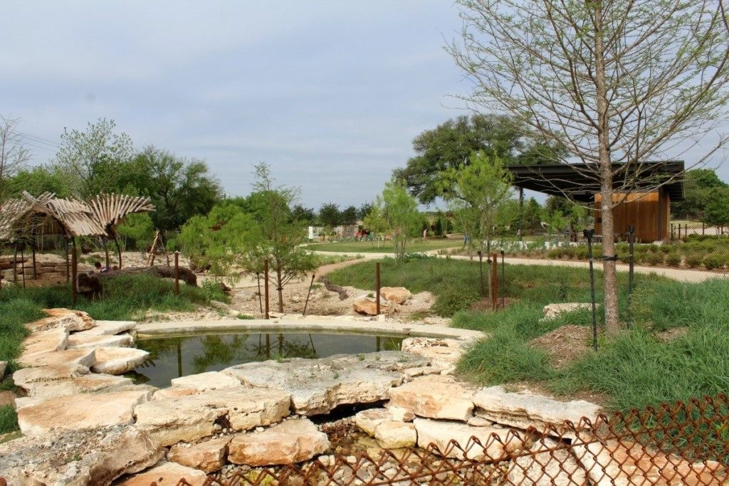 Cypress Spring at the Family Adventure Garden at the San Antonio Botanical Garden | Alamo City Moms Blog