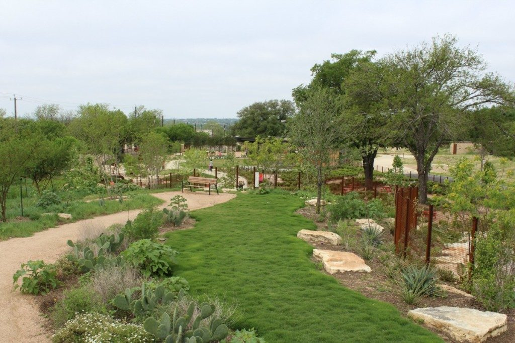 View from Prickly Pear Peak at the Family Adventure Garden at the San Antonio Botanical Garden | Alamo City Moms Blog