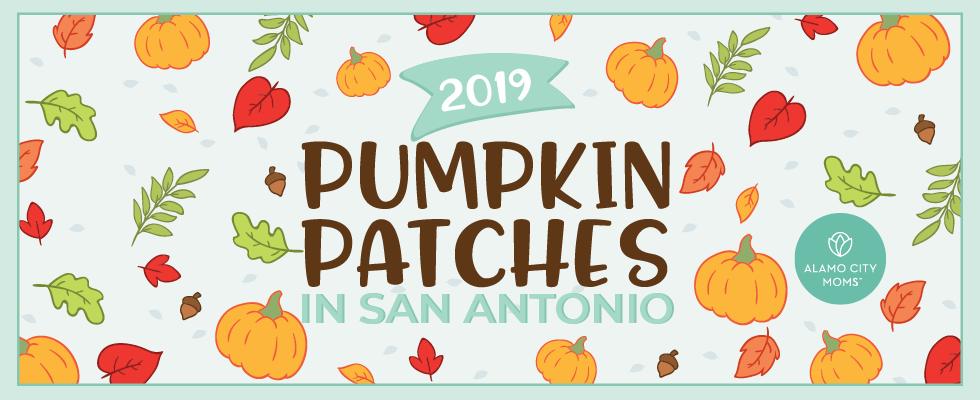 2019 pumpkin patches in san antonio