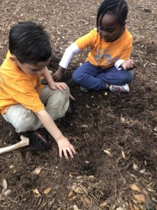 little boy and girl digging in the mulch and dirt