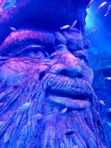 A closeup of a 15-foot Blackbeard the Pirate head inside SEA LIFE San Antonio