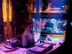 a child inside an aquarium exhibit