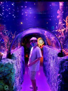 a child standing in a tunnel through an aquarium