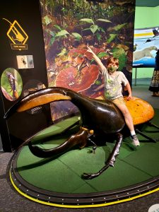a child riding a large beetle